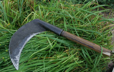 a scythe on grass